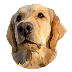 Fiverr freelancer will provide Cartoons & Comics services and draw your pet into a vector in 24 hours including Figures within 1 day Dog Vector, Vector Art, Canvas Painting Tutorials, Dog Illustration, Arte Pop, Skateboard Art, Watercolor Animals, Dog Portraits, Animal Paintings