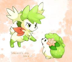 Shaymin Pokemon