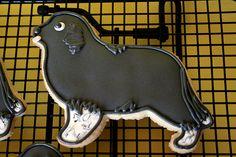 Newfoundland Dog Cookies!!!