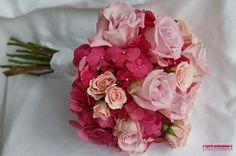 hortensie trandafir - Căutare Google