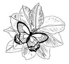 realistic flower coloring pages - Bing Images