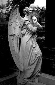 South Cemetery, Bonn
