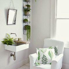 Casa de banho com plantas no seu interior