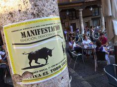 """Manifestación en Tordesillas para recuperar el Toro de la Vega: """"Este año lo han conseguido veremos el que viene"""""""