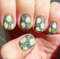 StephsNails: Daisy Nails!