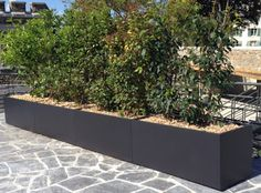 bespoke planters Image'In