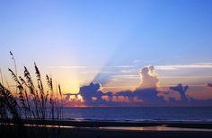 Matthew Coats    Hunting Island, South Carolina