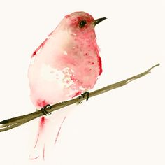 Fine Art Print of my Original Watercolor Painting of a pretty red bird on a branch.    Printed on heavyweight and acid-free Hahnemuehle Torchon