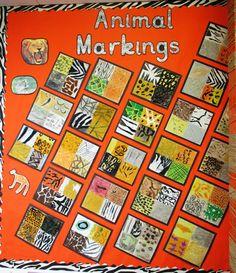 animal markings