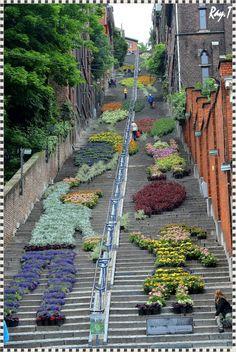 Liège, escalier de la montagne de Buren.Lo que se puede hacer con flores,unas escaleras y un poco de imaginación