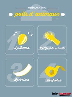 #Astuce : enlever les poils d'animaux. 1) L'électricité statique d'un ballon de baudruche. 2) L'adhérence des gants de vaisselle. 3) L'efficacité du velcro 4) Le collant du scotch !