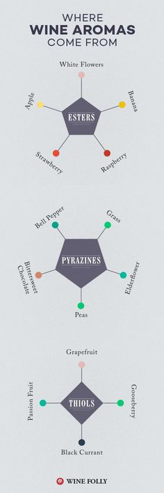 Learn:  Where wine flavors come from.