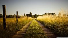 Country Background Images | Country road late summer wallpaper 300x168 Country road late summer ...