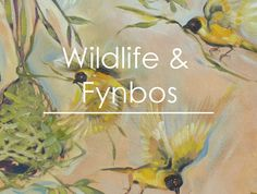 Sharon Boonzaier Wildlife Fynbos art gallery