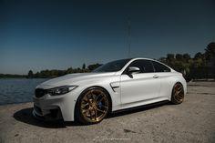 #BMW #F82 #M4 #Coupe E60 Bmw, Bmw M4, Concave, Automobile, Cars, Live Life, Badass, Wheels, Universe