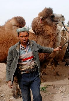 Camel Herder in Kashgar China