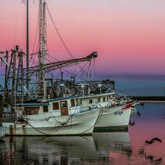 Pink skies John Snell