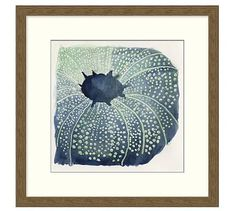 Sea Urchin Framed Print #potterybarn