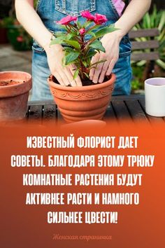 Small Farm, Indoor Plants, Planter Pots, Gardening, Plant Cuttings, Inside Plants, Lawn And Garden, Horticulture