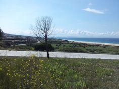 Las ruinas de Bolonia • Tarifa, Cádiz • Andalucía, España