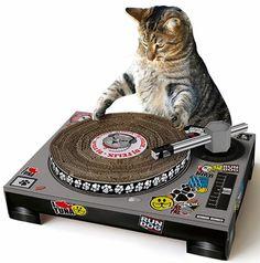 Cat DJ Scratching Deck - Cat Toy - $26.99