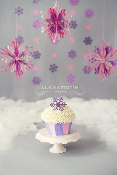 winter ONEland theme. pink & purple 1st birthday cake smash session portrait. snowflakes!  © Alana Marie Imagery www.alanamarieimagery.com www.facebook.com/AlanaMarieImagery