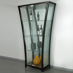 Good Modern Flair Glass Door Front Curio Cabinet With Frosted Sides   Espresso