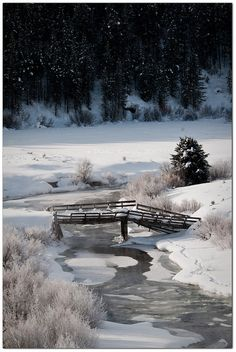 Like the scenery I remember when I grew up seeing in the Upstate NY winters