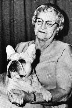 ANTIQUE PICTURES French Bulldogs