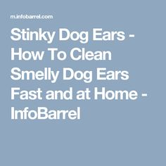 Stinky Dog Ears - How To Clean Smelly Dog Ears Fast and at Home - InfoBarrel