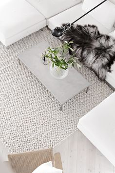Tisca rug_from above