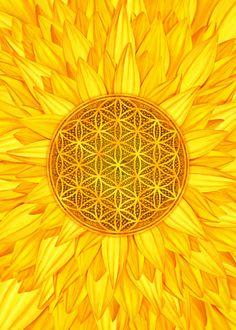 Poster Wall, Poster Prints, Alien Drawings, Wheel Of Life, Golden Sun, Sun Art, Hippie Art, Floral Wall Art, Flower Mandala