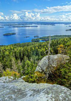 Nature at its best - Koli, Eastern Finland