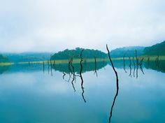 Checkout 30 most beautiful places to visit in Kerala and the beauty of God's own country. Enjoy the most alluring picture perfect tourist places in Kerala. South India Tour, Kerala Tourism, Visit India, Tourist Places, India Travel, Kerala Travel, India Trip, Beautiful Places To Visit, Lake View