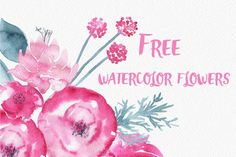 This pack includes over 20 fantastic watercolor floral illustrations by Nadi Spasibenko. Please note this product is only available for personal use.
