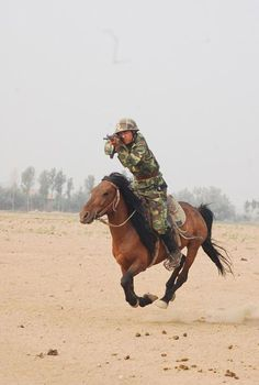Not many working cavalry are left in the world, but in some special situations on the battlefield horses still offer troops much needed support. Horses And Dogs, War Horses, Cosplay Anime, Horse Photos, Interesting History, Horse Love, Horse Breeds, Military History, Horse Riding