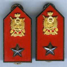 Mostrine per ufficiali e sottufficiali in uso dal 1971