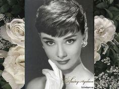Audrey Hepburn  - audrey-hepburn wallpaper