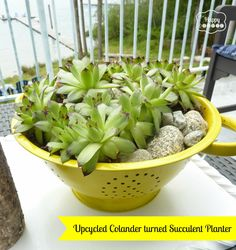 upcycling ideas for planters | 10+ Creative Planter Ideas {rainonatinroof.com} #planter #creative # ...