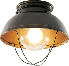 Cabela's Grand River Lodge™ Fisherman's Ceiling Light : Cabela's in Antique bronze only $39.99
