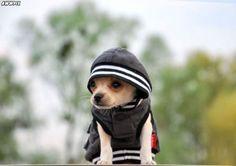 Me in my hoodie.