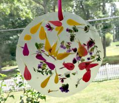 EASY suncatcher craft for kids! All you need is flowers & contact paper! #BackToPlay AD