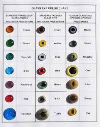 eye color chart - Google Search