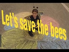 Let's save the bees (to bee or not to bee)