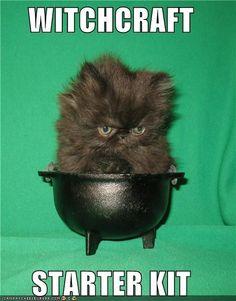 Witchcraft starter kit.