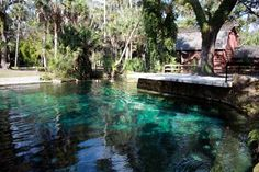 Juniper Springs = use to camp here all the time..
