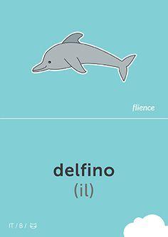 Delfino #CardFly #flience #animals #italian #education #flashcard #language