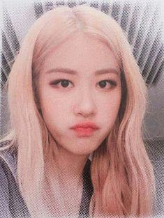 Kpop Girl Groups, Korean Girl Groups, Kpop Girls, Blackpink Jennie, Blackpink Jisoo, Blackpink Icons, Rose Icon, Rose Park, Blackpink Photos