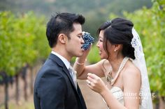 Grapes in the grape field // Wedding at BR Cohn Winery, Napa Valley // Christine Chang Photography. Goofy Couples, Field Wedding, Napa Valley, Wedding Photography, Wedding Dresses, Bride Dresses, Bridal Gowns, Wedding Dressses
