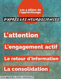 4 piliers de l'apprentissage d'après les neurosciences (ou comprendre comment nous apprenons)